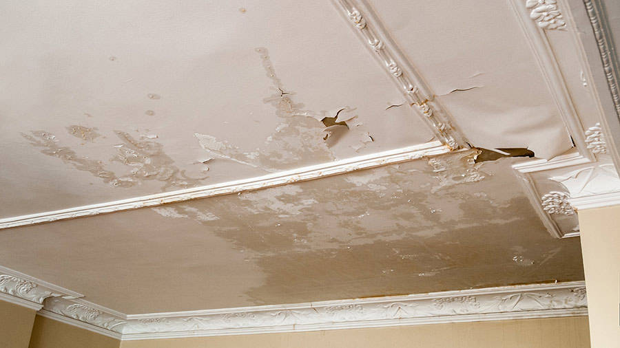 Water Damage on Ceiling