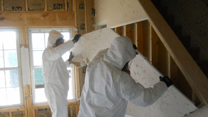 Professional Mold Remediation